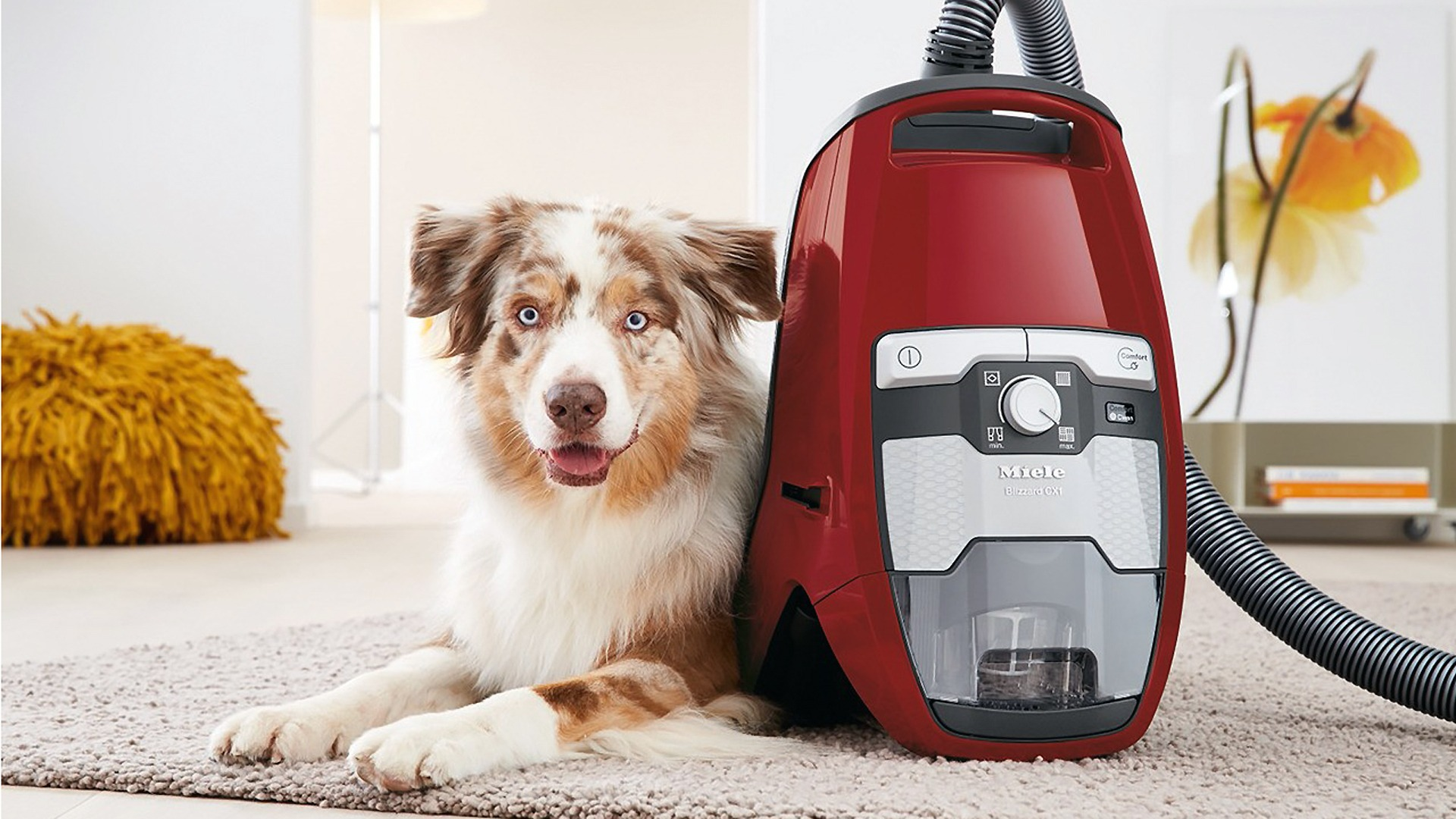 5 Best Vacuums For Pet Hairs In 2019 Ranked Consumers Base